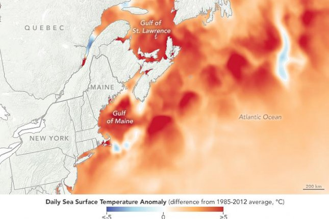 Climate change in North Atlantic fuels summertime warming in Northeast U.S.