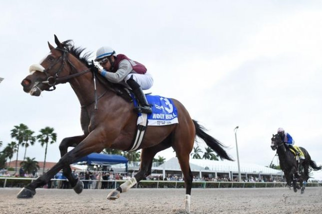 Tiz the Law, shown winning the Holy Bull Stakes at Gulfstream Park and the leader among Kentucky Derby contenders, is the favorite for Saturday's $1 million Belmont Stakes. Photo courtesy of Gulfstream Park