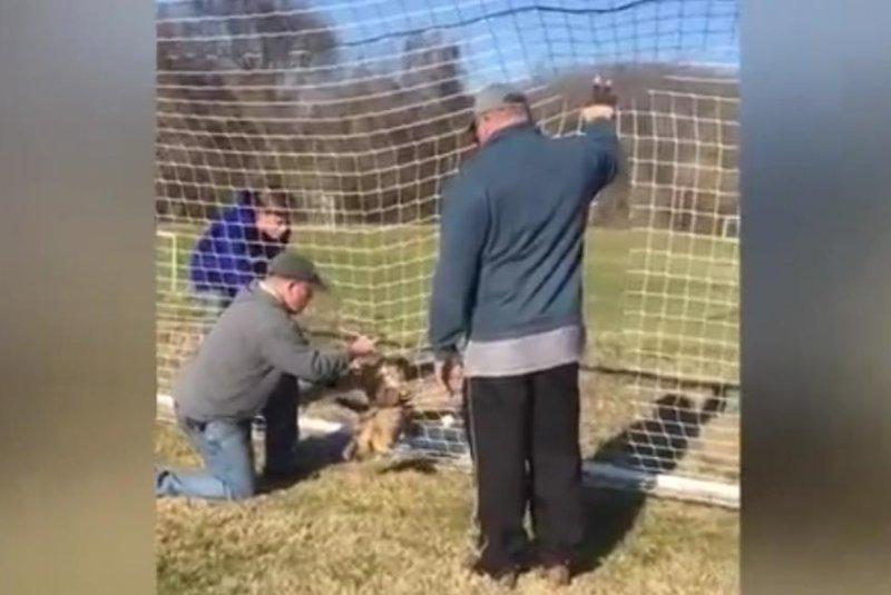 An owl caught in a soccer net gets some help. Screenshot: Newsflare