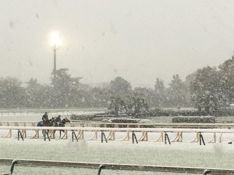 German hopefuls for Sunday's Japan Cup tour Tokyo Racecourse during a freak midweek snowstorm. Photo by Robert Kieckhefer/UPI