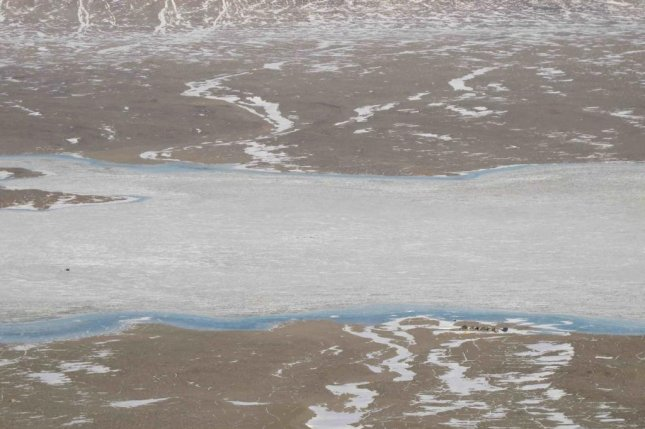 Oxygen oasis at bottom of Antarctic lake resembles ancient Earth