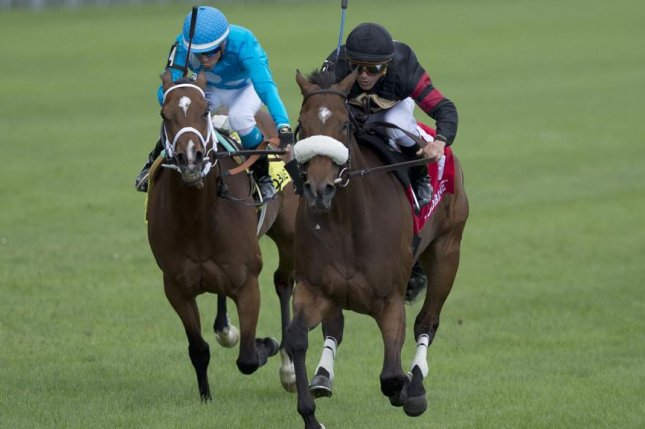 The 2017 Queen's Plate winner, Holy Helena, who is shown winning the Dance Smartly Stakes earlier this year, returns for Saturday's Grade I E.P. Taylor Stakes at Woodbine. Photo by Michael Burns photo, courtesy of Woodbine