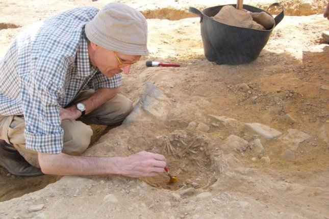 Archaeologists recovered DNA from more than 200 cat specimens, some of which were excavated at ancient Egyptian dig sites. Photo by KU Leuven