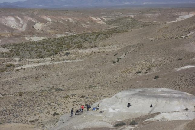 Patagonian leaf fossils suggest life quickly rejuvenated in wake of dino extinction