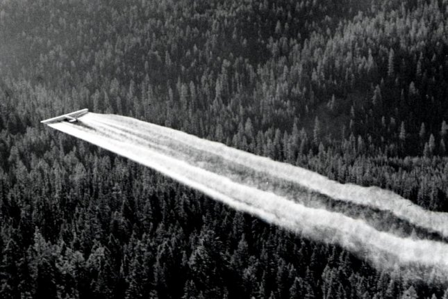 In an effort to combat spruce budworm outbreaks, DDT was sprayed liberally across conifer forests throughout North American during the 1950s, 60s and early 70s. Photo by U.S. Forest Service/USDA