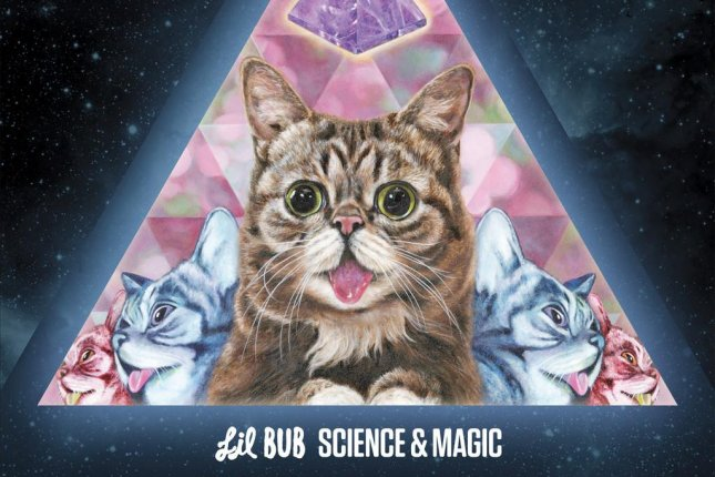 The cover art for Lil Bub's new album Science and Magic' to be released Dec. 4 via Joyful Noise. Photo courtesy of Joyful Noise