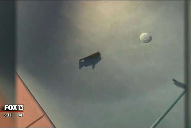 A catfish that fell out of the sky swims in a Winter Haven, Fla., couple's pool. Screenshot: WTVT-TV