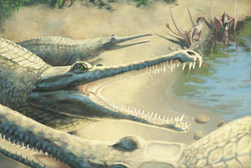 An artistic illustration of the prehistoric crocodile. Photo byJulia Beier