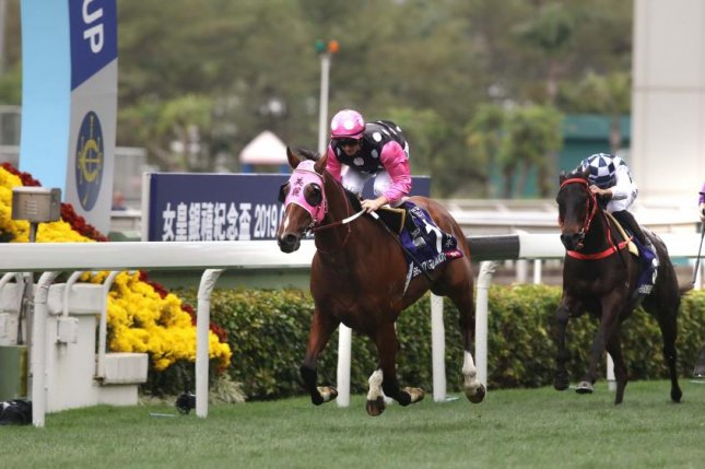Beauty Generation scores his seventh straight win Sunday at Sha Tin Racecourse in the Group 1 Queen's Silver Jubilee Cup. Hong Kong Jockey Club photo