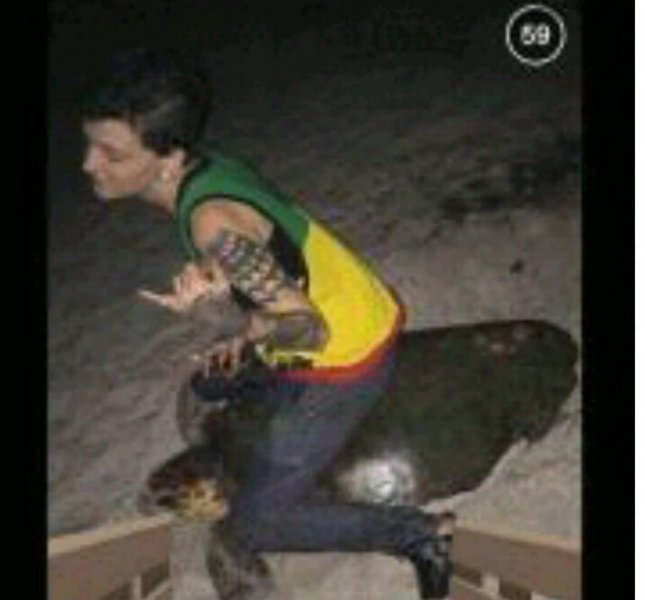 Stephanie Moore, 20, was arrested in Melbourne, Fla., after this July photo of her apparently riding on the back of a sea turtle went viral. Melbourne Police Department/Facebook