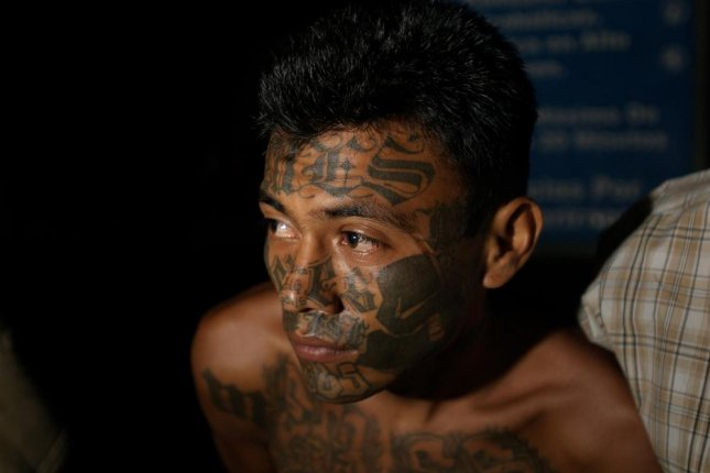 The Supreme Court of El Salvador ruled that criminal gangs within the country will be considered terrorist on Monday. Pictured: A suspected Mara Salvatrucha, also known as MS-13, gang member captured in El Salvador on Feb. 8, 2008, in Soyapango, known as one of the most dangerous areas of El Salvador. File Photo by ES James/Shutterstock