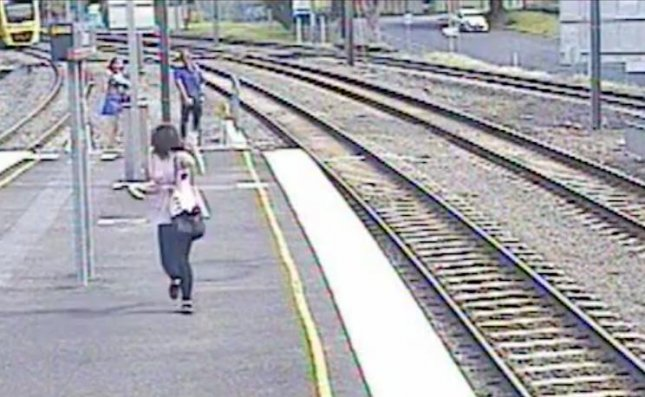 An Australian teenage girl's pet budgerigar parakeet briefly stopped train service in Brisbane after it flew onto the tracks at a local railway. 