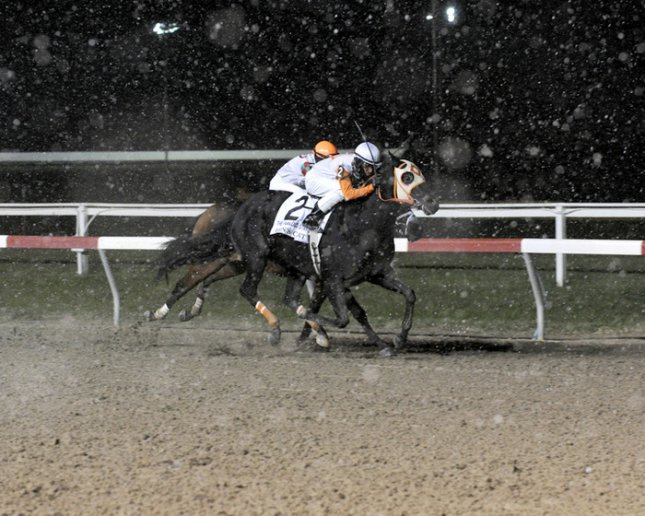 Ben's Cat wins Fabulous Strike Handicap at Penn National for second straight year. (Photo courtesy B&D Photography)