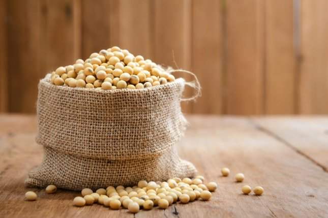 Soy beans and products are known to be safe for consumption, making derivatives a good option to prevent food-borne pathogens, based on a recent study. Photo by Bohbeh/Shutterstock