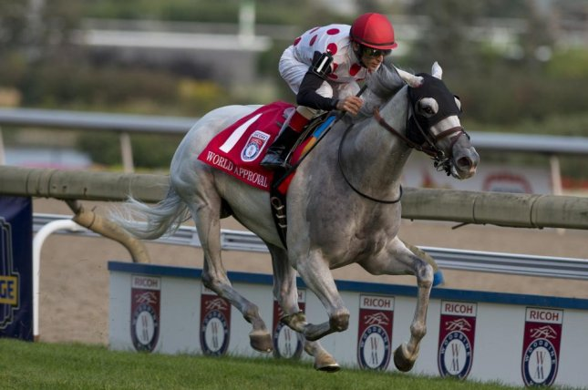 World Approval scores the victory over international rivals in Saturday's (Sept. 16) Ricoh Woodbine Mile. Photo courtesy of Woodbine