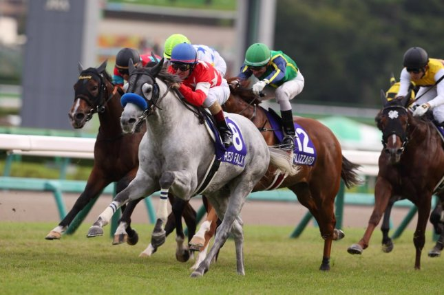 Red Falx storms to victory for the second straight year in Sunday's Sprinter Stakes at Nakayama in Japan. Photo courtesy of HKJC