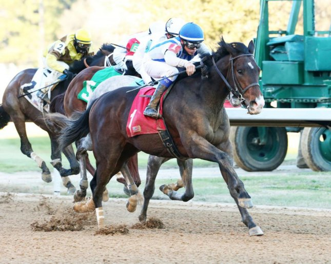 Higher Power, seen winning his 2018 debut at Oaklawn Park, will be one of the top contenders in Saturday's Rebel Stakes over the same track for Kentucky Derby hopefuls. (Oaklawn photo)