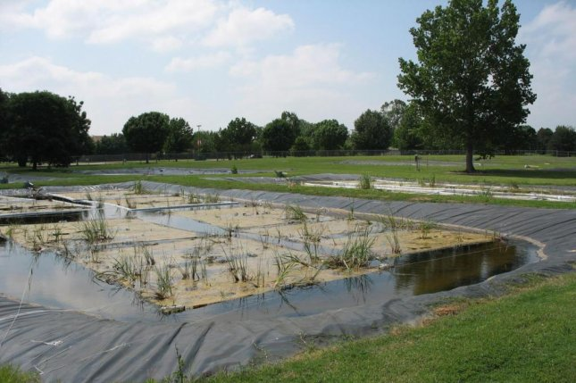 Researchers tested the water-cleaning abilities of different floating wetland designs in a model wastewater treatment plant at the University of Oklahoma Aquatic Research Facility. Photo by William Strosnider