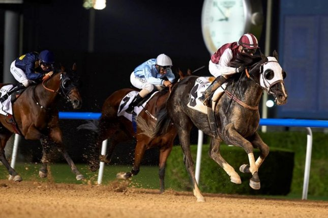 Need to Know powers to victory in the Gulf News Conditiions Race on Thursday as Polar River finishes fourth. (Andrew Watkins/DRC)
