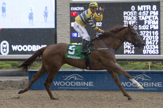 Jockey Eurico Da Silva celebrates as Pink Lloyd wins his 11th straight stakes race and passes the $1 million mark in career earnings Sunday in the Achievement Stakes at Woodbine. Photo courtesy of Ontario Jockey Club