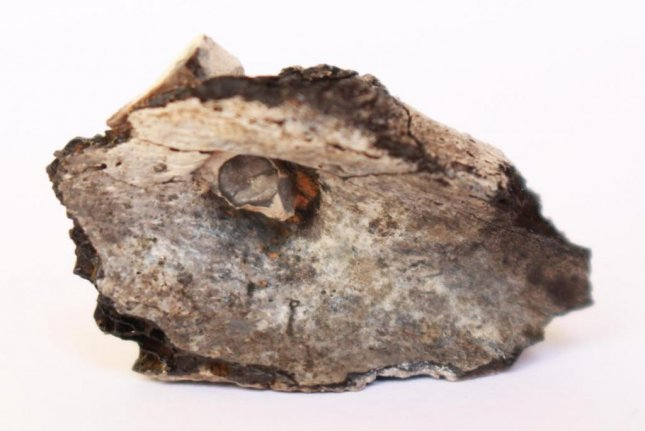 The burned bone fragments showed cremated remains found at a pit belonged to a young adult who had been injured by a flint projectile several months before dying. Photo by Mission Beisamoun