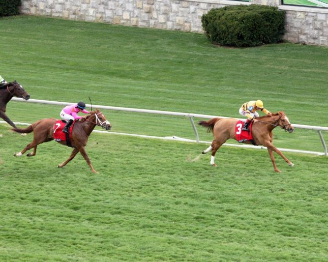 Wise Dan, reigning two-time Horse of the Year, wins his first start of 2014 in the Grade I Maker's 46 Mile at Keeneland (Keeneland photo)