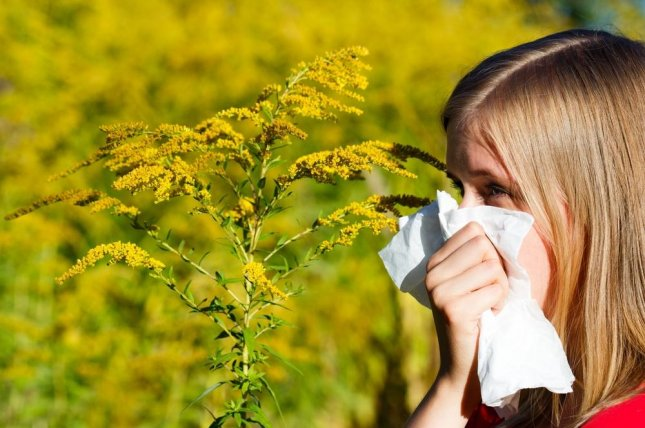 New research shows that nitrous oxide release from cars as exhaust fumes makes pollen more allergenic. Photo by Barabasa/Shutterstock