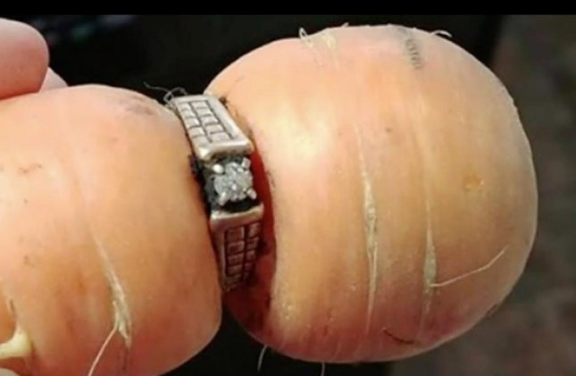 'Carrot' takes on whole new meaning for woman who lost ring