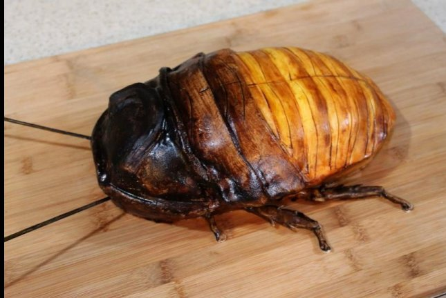 This giant cockroach is actually a cake. Screenshot: Storyful