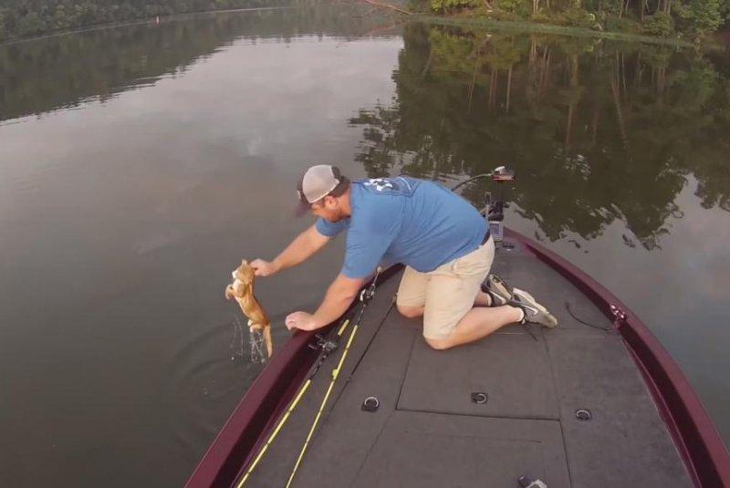 An Alabama fisherman pulls a kitten out of the Warrior River. Screenshot: AL.com/YouTube