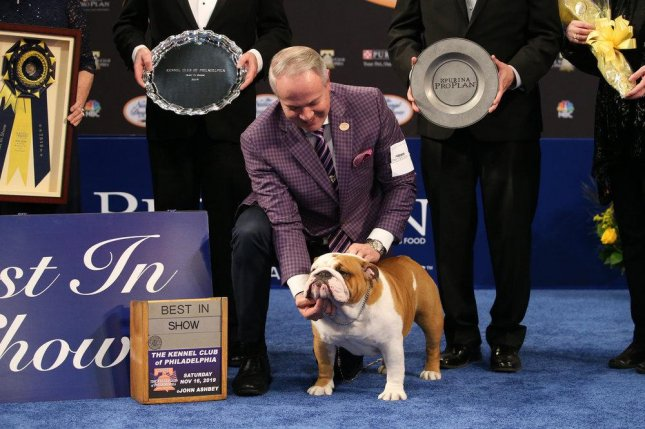 Handler Eduardo Paris and Thor the Bulldog, winner of the 2019 National Dog Show title. Photo by Bill McCay/NBC