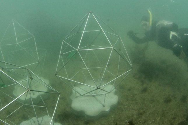 The artificial reef consists of eight pods, each featuring three hexagonal frames composed of marine grade steel and concrete. Photo by Alex Goad/UTS