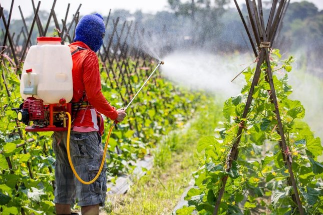 Although they did not say occupational or other exposure to glyphosate is safe, a group of international researchers said the level of Monsanto's main weedkilling product is unlikely to cause cancer at the levels is orally ingested by people. Photo by ittipon/Shutterstock