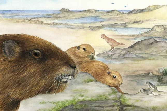 An artistic representation of Vintana during the age of the dinosaurs. (Stony Brook/Lucille Betti-Nash)