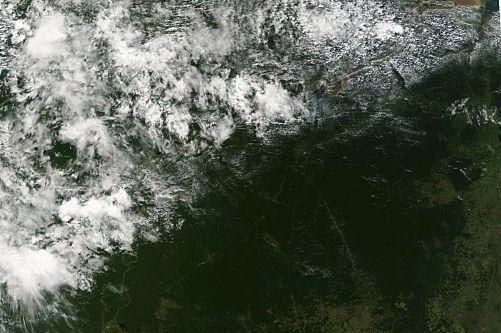 A satellite image of the Brazilian rainforest. (NASA/MODIS)