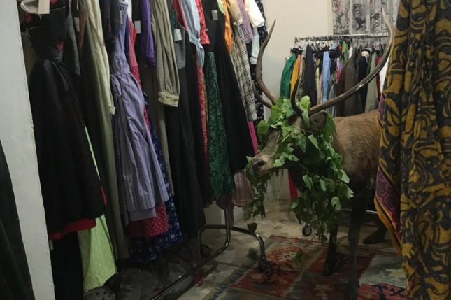A deer was rescued from an Italian clothing store after wandering into the shop and becoming disoriented. Photo courtesy of Provincia di Belluno