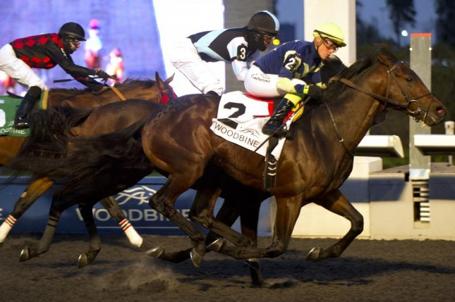 Luke's Alley (No. 2) winning the Grade II Autumn Stakes at Woodbine 11/9. (OJC photo/Burns)
