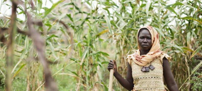 A family farmer is shown in Chad, Africa, one of the least developed countries extremely vulnerable to the economic shock caused by COVID-19. File Photo by Asselin/UNICEF