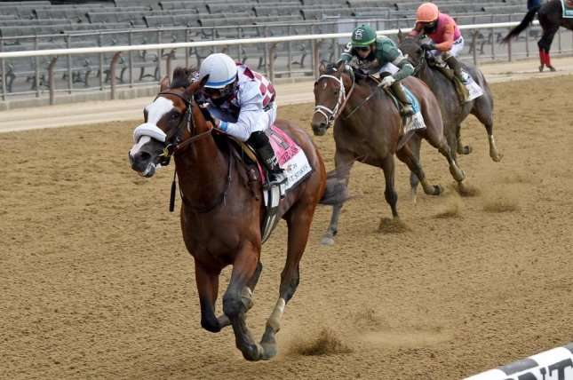 Tiz the Law(seen winning this year's Belmont Stakes) is among the favorites in Saturday's $6 million Breeders' Cup Classic at Keeneland. Photo by Chelsea Durand, courtesy of New York Racing Association.
