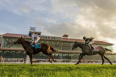 Synchrony, seen winning the Fair Grounds Handicap on Feb. 18 in New Orleans, is among the favorites for Saturday's $200,000 Grade II Monmouth Stakes on the Jersey Shore. Photo by Hodges Photography, courtesy of Fair Grounds