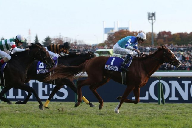 Cheval Grand wins Sunday's Group 1 Japan Cup in Tokyo. Photo courtesy of JRA