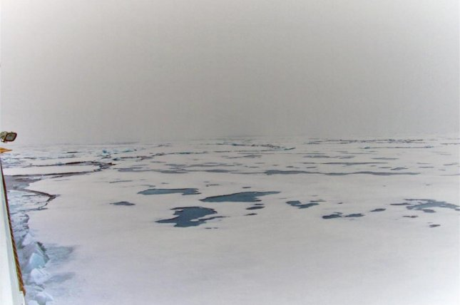 Researchers have found melt ponds on Arctic sea ice contains food source for marine life. Photo by Heidi Louise Sørensen/SDU