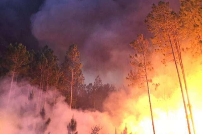 Georgia, Florida's West Mims fire grows to 143,000 acres
