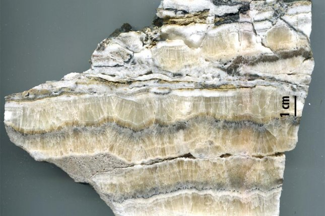 White calcite deposits in rocks from a fault line in New Mexico helped scientists create a record-long earthquake record. Photo by Laurel Goodwin and Randy Williams