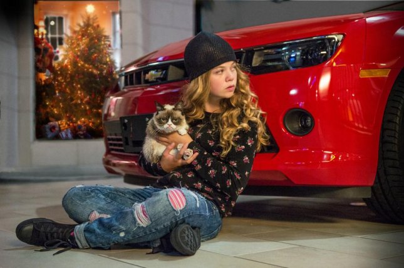Grumpy Cat Christmas movie image released