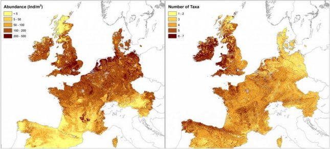 The first map of European earthworms reveals population distribution and biodiversity density. Photo by SINC