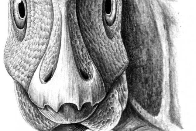 First fossil facial tumor found in duck-billed dinosaur