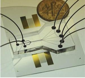 Slightly larger than a dime, this cell-sorting device uses two sound beams to act as acoustic tweezers. Credit: Penn State