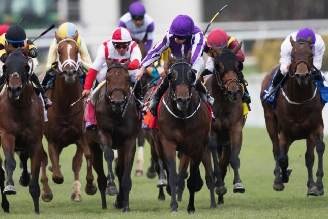 Mendelssohn (purple and white), seen winning the 2017 Breeders' Cup Juvenile Turf, tackles Saturday's Grade I Cigar Mile at Aqueduct. Photo courtesy of Breeders' Cup
