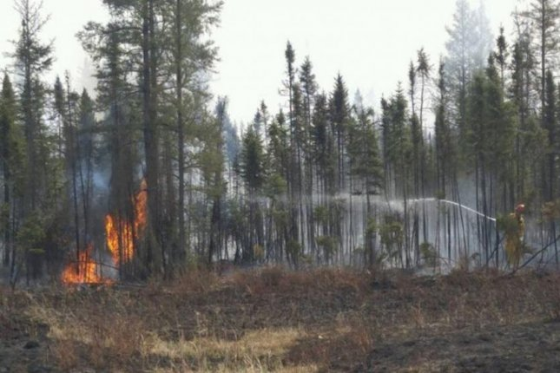 Fort McMurray wildfire slows slightly as it nears Saskatchewan